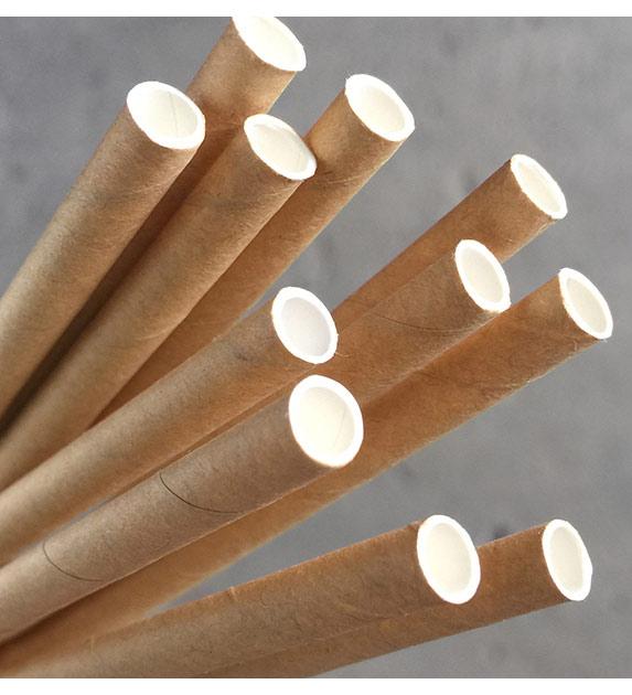 Regular Paper Straw - Kraft Pkt 250