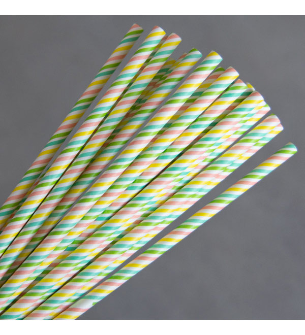Regular Paper Straw - Rainbow Pkt 250