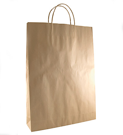 Medium Kraft Bag Brown 480x340